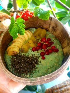 Porridge mit bunten Früchten und Quinoa- Bananen, Kiwi und Heidelbeeren